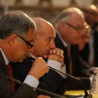 Francesco S. Lauro, Emanuele Grimaldi, Thomas Rehder